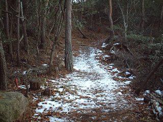 雪の残る遊??道