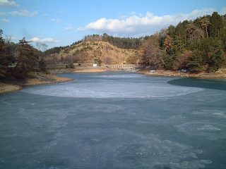 凍結した池