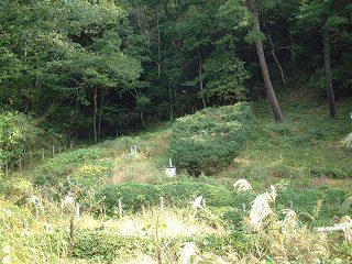 姫谷焼窯跡