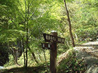 桜滝への分岐